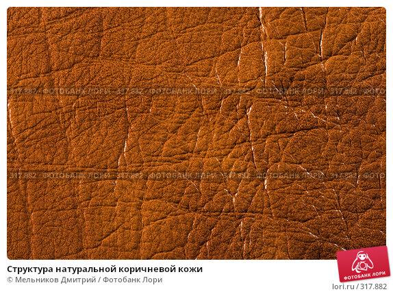 Купить «Структура натуральной коричневой кожи», фото № 317882, снято 11 мая 2008 г. (c) Мельников Дмитрий / Фотобанк Лори