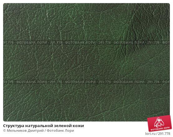 Структура натуральной зеленой кожи, фото № 291778, снято 11 мая 2008 г. (c) Мельников Дмитрий / Фотобанк Лори