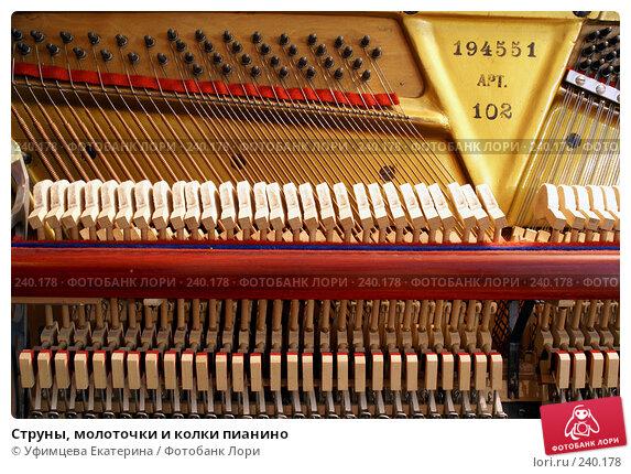 Струны, молоточки и колки пианино, фото № 240178, снято 5 декабря 2016 г. (c) Уфимцева Екатерина / Фотобанк Лори