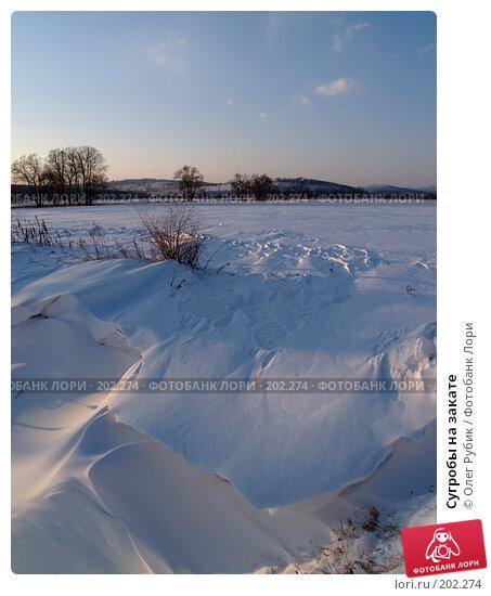 Купить «Сугробы на закате», фото № 202274, снято 13 февраля 2008 г. (c) Олег Рубик / Фотобанк Лори