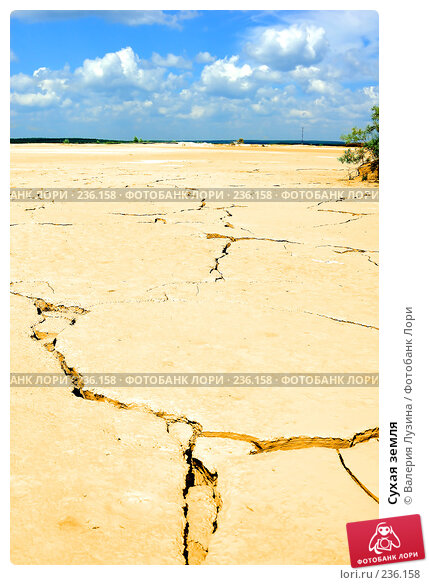 Сухая земля, фото № 236158, снято 13 июля 2007 г. (c) Валерия Потапова / Фотобанк Лори