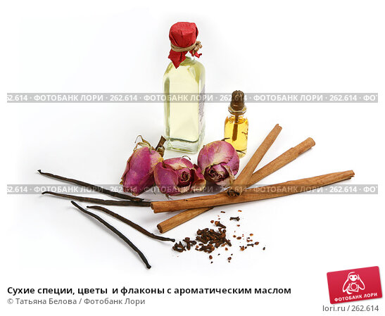 Сухие специи, цветы  и флаконы с ароматическим маслом, фото № 262614, снято 20 апреля 2008 г. (c) Татьяна Белова / Фотобанк Лори