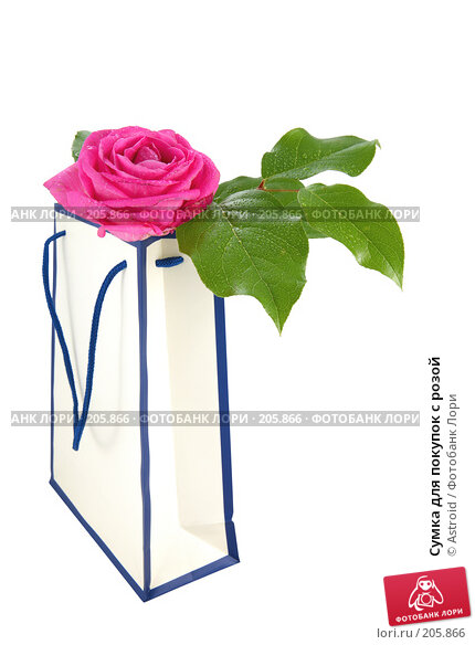 Сумка для покупок с розой, фото № 205866, снято 14 апреля 2007 г. (c) Astroid / Фотобанк Лори
