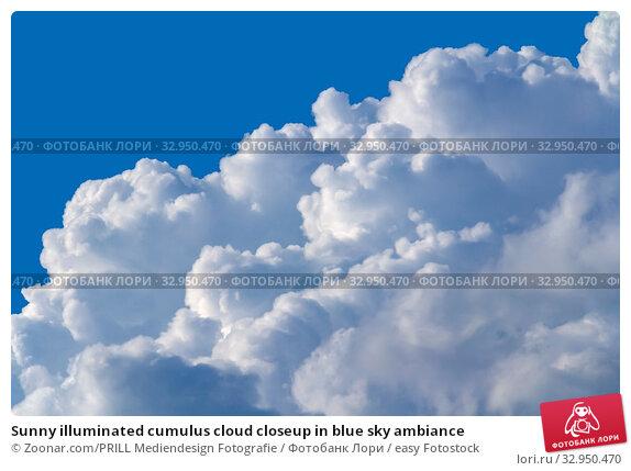 Sunny illuminated cumulus cloud closeup in blue sky ambiance. Стоковое фото, фотограф Zoonar.com/PRILL Mediendesign Fotografie / easy Fotostock / Фотобанк Лори