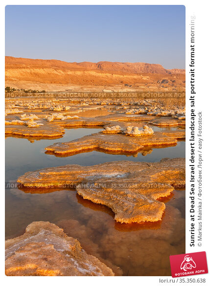 Sunrise at Dead Sea Israel desert landscape salt portrait format morning... Стоковое фото, фотограф Markus Mainka / easy Fotostock / Фотобанк Лори