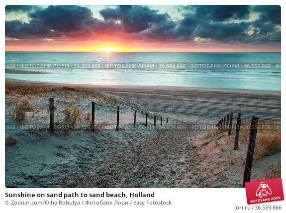 Sunshine on sand path to sand beach, Holland. Стоковое фото, фотограф Zoonar.com/Olha Rohulya / easy Fotostock / Фотобанк Лори