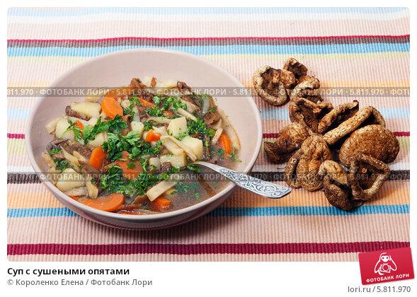 Суп из сушеных опят рецепт с фото