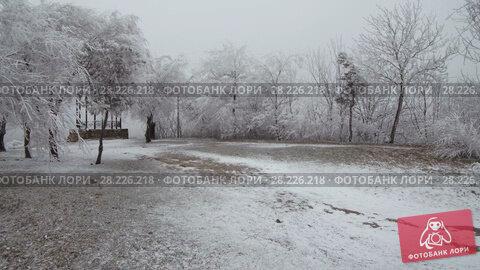 Купить «Surrealistic mountain glade. Windy weather, trees covered with hoarfrost.», видеоролик № 28226218, снято 24 марта 2018 г. (c) Андрей Радченко / Фотобанк Лори