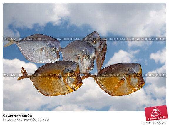 Сушеная рыба, фото № 238342, снято 13 мая 2007 г. (c) Goruppa / Фотобанк Лори