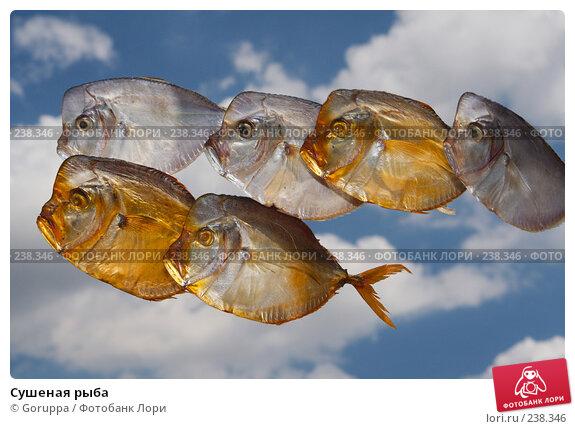 Сушеная рыба, фото № 238346, снято 13 мая 2007 г. (c) Goruppa / Фотобанк Лори