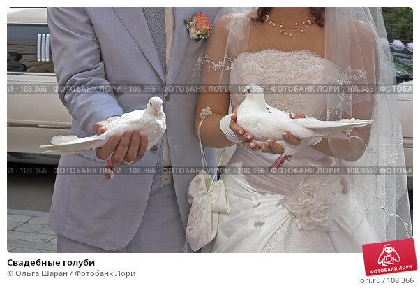 Свадебные голуби, фото № 108366, снято 25 августа 2007 г. (c) Ольга Шаран / Фотобанк Лори