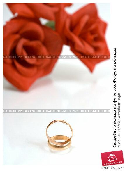 Свадебные кольца на фоне роз. Фокус на кольцах., фото № 80178, снято 15 апреля 2007 г. (c) Ильин Сергей / Фотобанк Лори