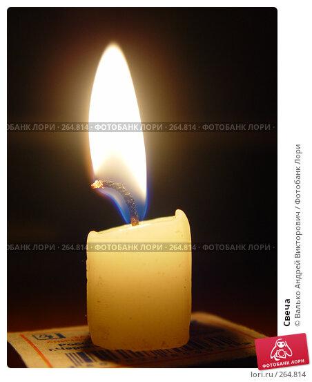 Свеча, фото № 264814, снято 30 октября 2005 г. (c) Валько Андрей Викторович / Фотобанк Лори