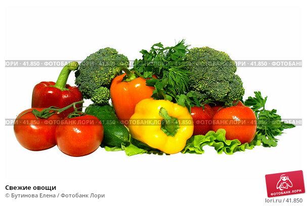 Свежие овощи, фото № 41850, снято 5 апреля 2007 г. (c) Бутинова Елена / Фотобанк Лори