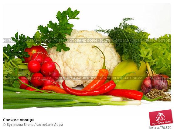 Купить «Свежие овощи», фото № 70570, снято 9 августа 2007 г. (c) Бутинова Елена / Фотобанк Лори