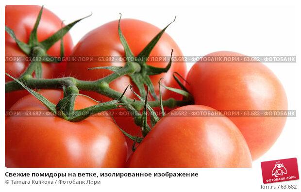Купить «Свежие помидоры на ветке, изолированное изображение», фото № 63682, снято 20 июля 2007 г. (c) Tamara Kulikova / Фотобанк Лори