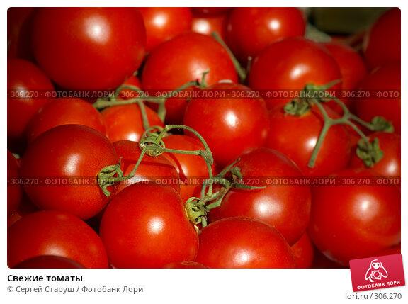 Свежие томаты, фото № 306270, снято 1 июня 2008 г. (c) Сергей Старуш / Фотобанк Лори