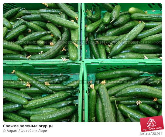 Свежие зеленые огурцы, фото № 28914, снято 1 апреля 2007 г. (c) Аврам / Фотобанк Лори