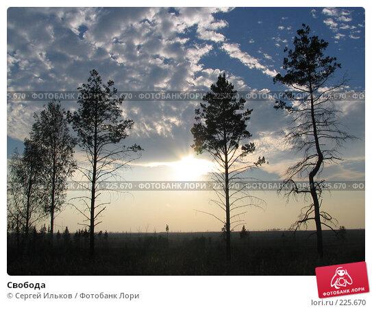 Свобода, фото № 225670, снято 10 сентября 2005 г. (c) Сергей Ильков / Фотобанк Лори