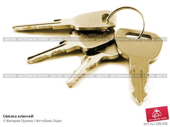 Связка ключей, фото № 230978, снято 30 мая 2007 г. (c) Валерия Потапова / Фотобанк Лори