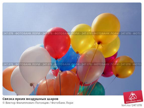 Связка ярких воздушных шаров, фото № 247078, снято 26 апреля 2007 г. (c) Виктор Филиппович Погонцев / Фотобанк Лори