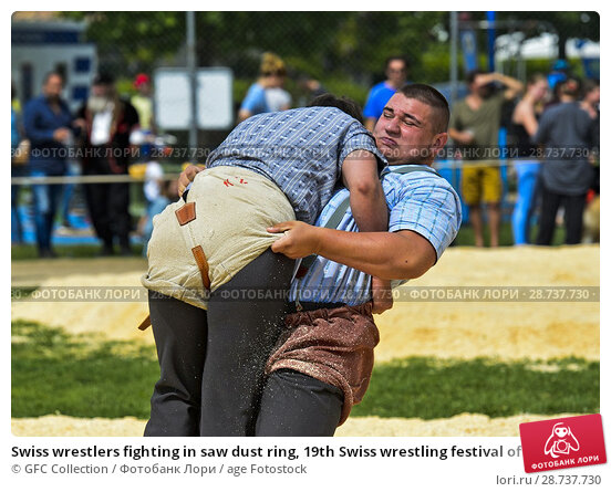 Купить «Swiss wrestlers fighting in saw dust ring, 19th Swiss wrestling festival of the Canton of Geneva, Anières, Geneva, Switzerland.», фото № 28737730, снято 12 мая 2018 г. (c) age Fotostock / Фотобанк Лори