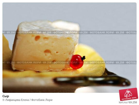 Сыр, фото № 69258, снято 5 августа 2007 г. (c) Лифанцева Елена / Фотобанк Лори