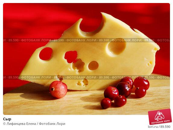 Сыр, фото № 89590, снято 25 сентября 2007 г. (c) Лифанцева Елена / Фотобанк Лори