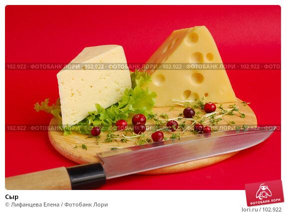 Сыр, фото № 102922, снято 24 января 2017 г. (c) Лифанцева Елена / Фотобанк Лори
