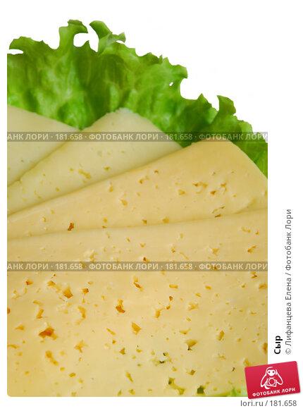 Сыр, фото № 181658, снято 19 января 2008 г. (c) Лифанцева Елена / Фотобанк Лори