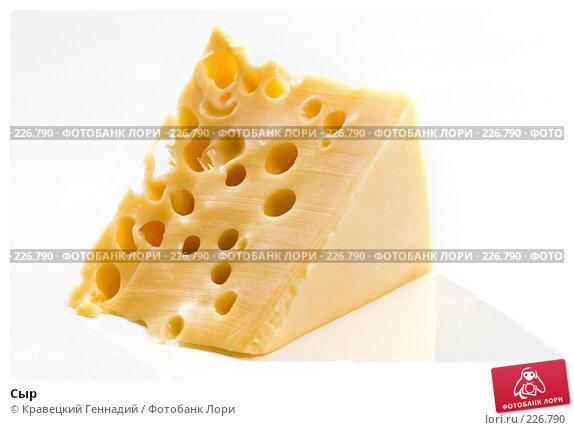 Сыр, фото № 226790, снято 20 сентября 2005 г. (c) Кравецкий Геннадий / Фотобанк Лори