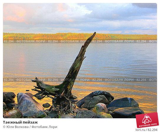 Таежный пейзаж, фото № 82294, снято 28 августа 2004 г. (c) Юля Волкова / Фотобанк Лори