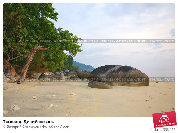 Таиланд. Дикий остров., фото № 336122, снято 24 февраля 2008 г. (c) Валерий Ситников / Фотобанк Лори