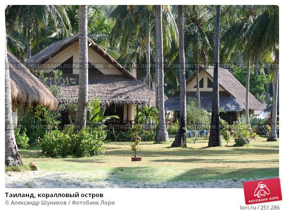 Тайланд, коралловый остров, фото № 251286, снято 3 марта 2006 г. (c) Александр Шуников / Фотобанк Лори