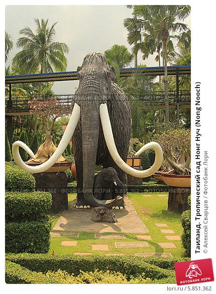 Таиланд. Тропический сад Нонг Нуч (Nong Nooch) (2014 год). Редакционное фото, фотограф Алексей Сварцов / Фотобанк Лори