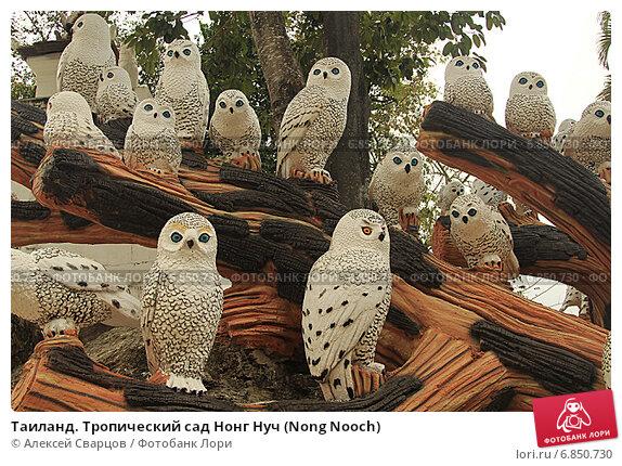 Купить «Таиланд. Тропический сад Нонг Нуч (Nong Nooch)», фото № 6850730, снято 22 февраля 2014 г. (c) Алексей Сварцов / Фотобанк Лори
