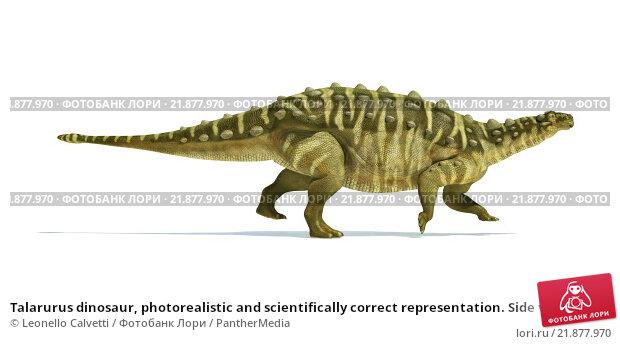 Купить «Talarurus dinosaur, photorealistic and scientifically correct representation. Side view.», фото № 21877970, снято 22 сентября 2019 г. (c) PantherMedia / Фотобанк Лори