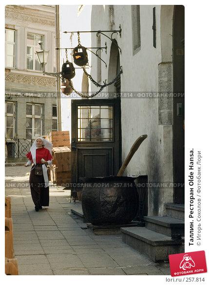 Таллин. Ресторан Olde Hansa., эксклюзивное фото № 257814, снято 20 апреля 2008 г. (c) Игорь Соколов / Фотобанк Лори