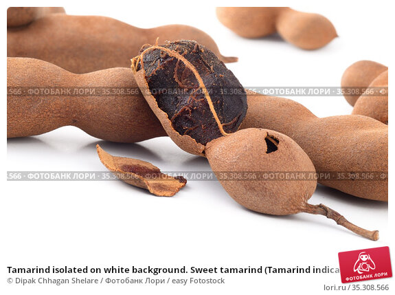 Tamarind isolated on white background. Sweet tamarind (Tamarind indica... Стоковое фото, фотограф Dipak Chhagan Shelare / easy Fotostock / Фотобанк Лори