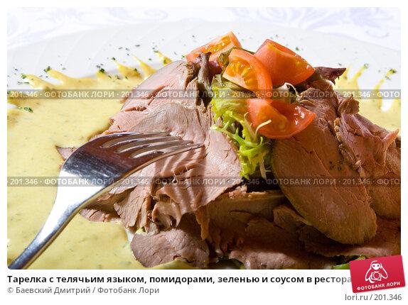 Тарелка с телячьим языком, помидорами, зеленью и соусом в ресторане, фото № 201346, снято 12 февраля 2008 г. (c) Баевский Дмитрий / Фотобанк Лори