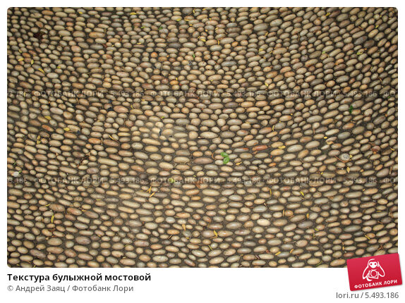 Текстура булыжной мостовой. Стоковое фото, фотограф Андрей Заяц / Фотобанк Лори