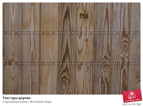 Текстура дерева, фото № 41762, снято 17 марта 2007 г. (c) Бутинова Елена / Фотобанк Лори