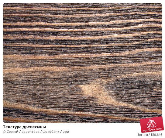 Текстура древесины, фото № 180646, снято 28 августа 2006 г. (c) Сергей Лаврентьев / Фотобанк Лори