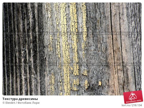 Текстура древесины, фото № 218134, снято 27 октября 2016 г. (c) ElenArt / Фотобанк Лори