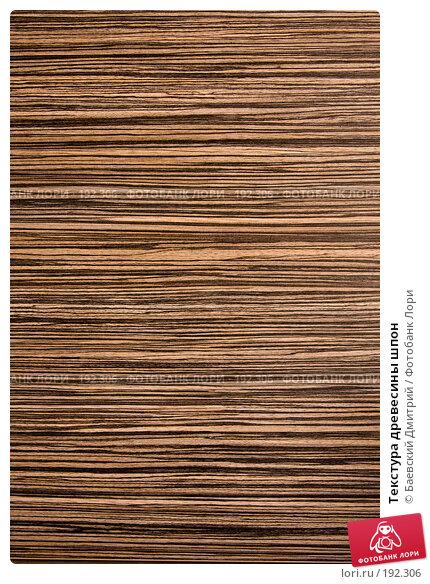 Купить «Текстура древесины шпон», фото № 192306, снято 2 февраля 2008 г. (c) Баевский Дмитрий / Фотобанк Лори