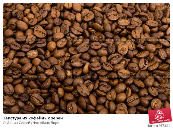 Текстура их кофейных зерен, фото № 67614, снято 16 апреля 2007 г. (c) Ильин Сергей / Фотобанк Лори