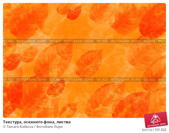 Текстура, осеннего фона, листва, фото № 101922, снято 26 октября 2016 г. (c) Tamara Kulikova / Фотобанк Лори