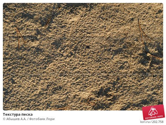 Текстура песка, фото № 202758, снято 6 октября 2007 г. (c) Абышев А.А. / Фотобанк Лори
