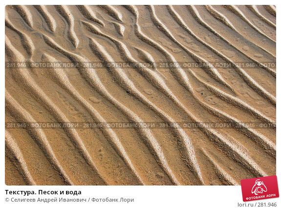 Купить «Текстура. Песок и вода», фото № 281946, снято 22 апреля 2007 г. (c) Селигеев Андрей Иванович / Фотобанк Лори