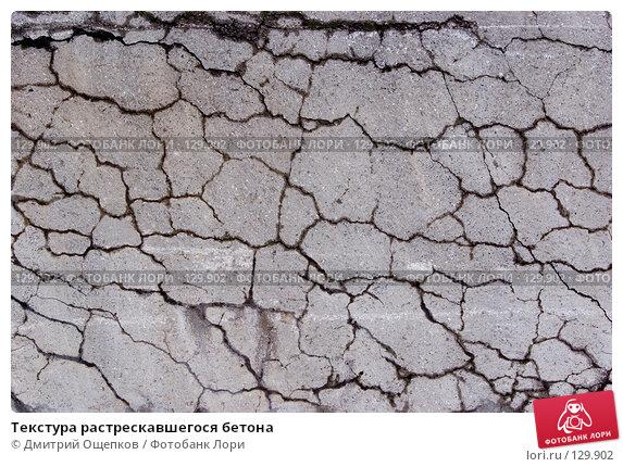 Текстура растрескавшегося бетона, фото № 129902, снято 21 марта 2007 г. (c) Дмитрий Ощепков / Фотобанк Лори